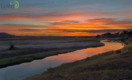 zambezi_sunrise_1_2012_Wild Eye Photography